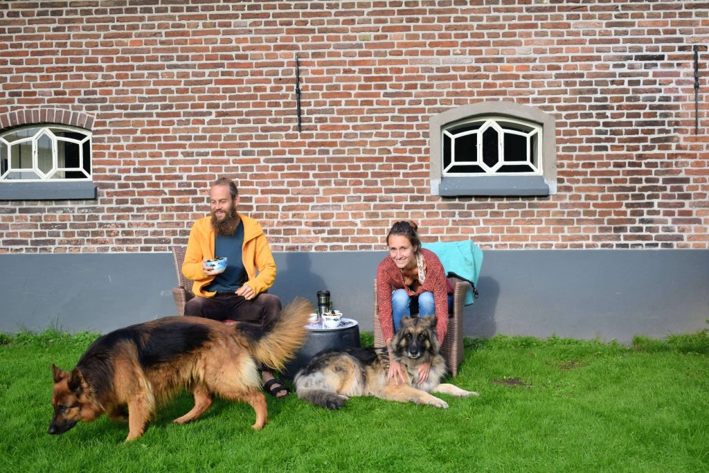 house & pet sitters